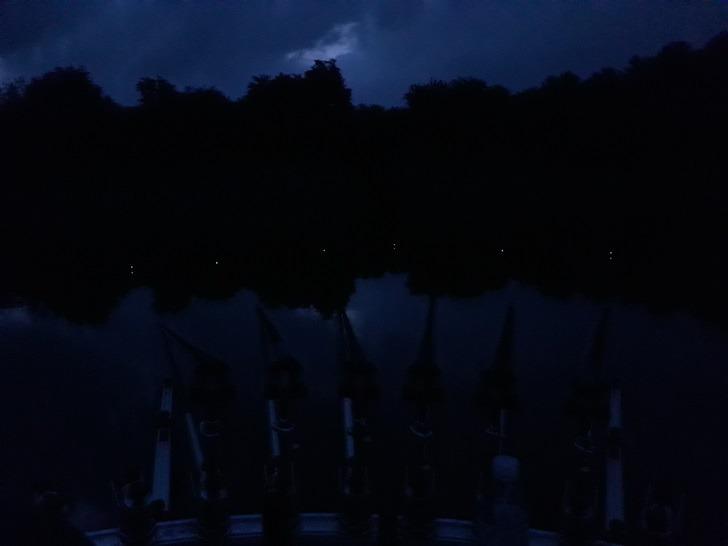 [민물대낚] 2019년 14차 : 물맑은 임하댐에서