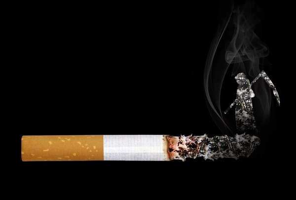 cigarette smoke fag tobacco cigar 담배 담배꽁초 흡연 금연