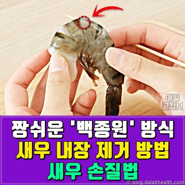 짱쉬운 백종원 식 '새우 내장 제거 방법' (새우 손질법)