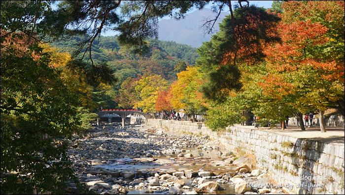 통도사의 가을풍경