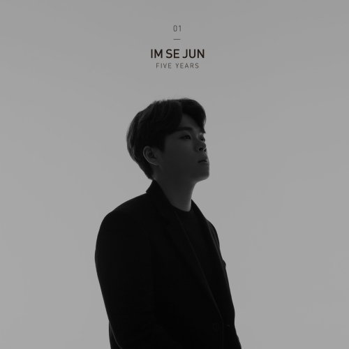 Im Se Jun – In The End, It's You Lyrics [English, Romanization]