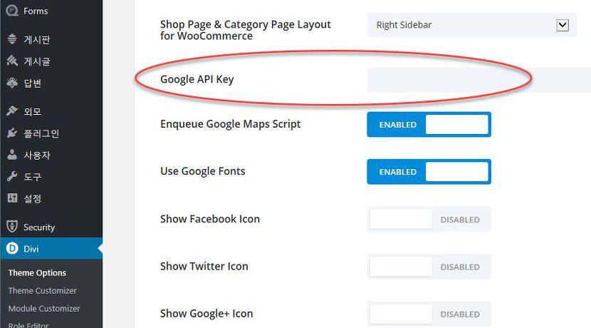 Divi 테마 구글 맵 API 입력