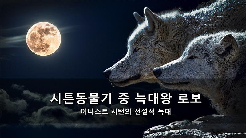 시튼동물기 중 늑대왕 로보 - 어니스트 시턴의 전설적 늑대