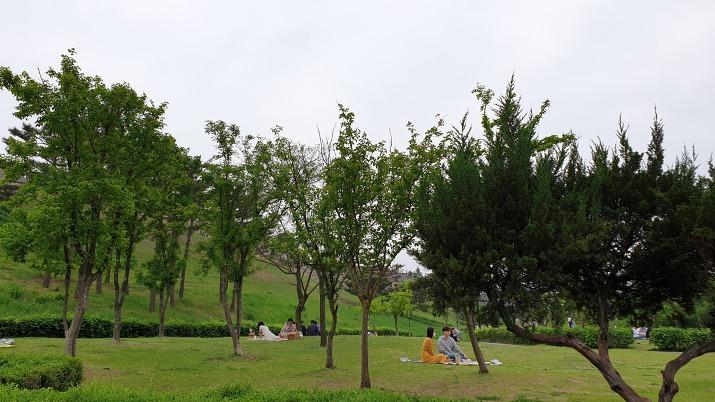 수원 방화수류정 잔디밭