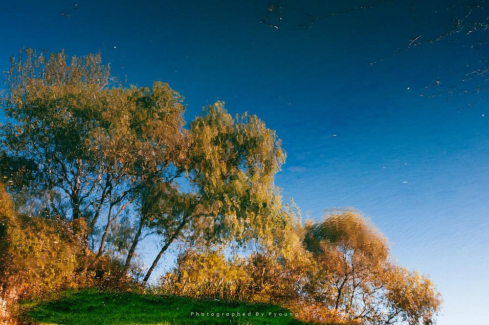 호수에 비친 가을