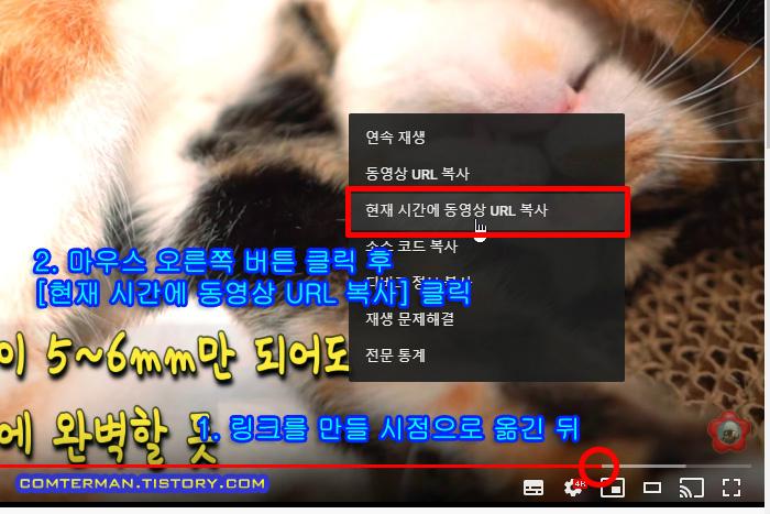 유튜브 현재 시간 URL