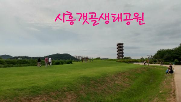 시흥갯골생태공원