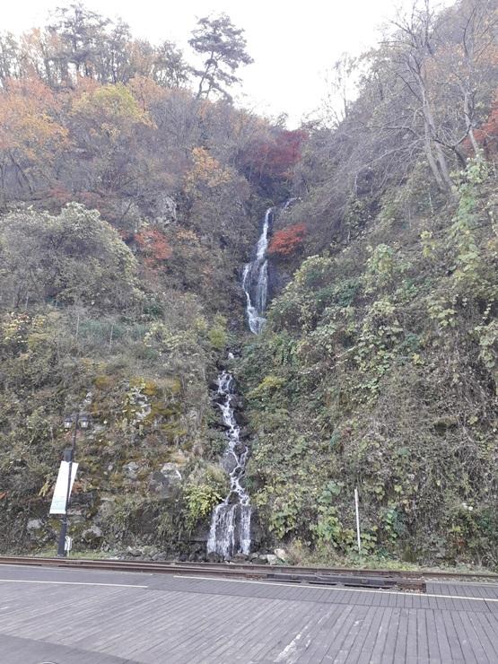김유정역 레일바이크