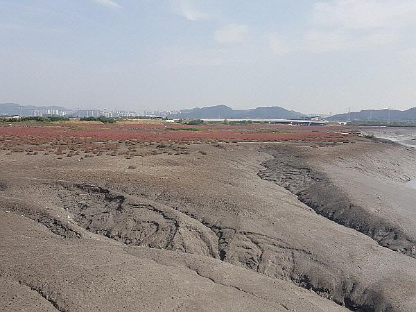 인천 사막