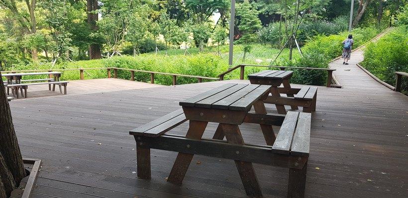 청계산 서울대공원 등산로
