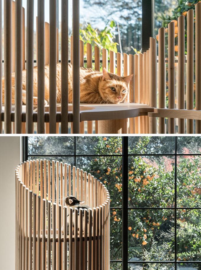 캣트리 Yoh Komiyama Neko Modern Cat Tree 5osa 오사
