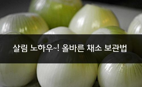 살림 노하우~! 유통기한 늘려주는 채소 보관 꿀팁! [살림정보  생활정보] 양파 보관법