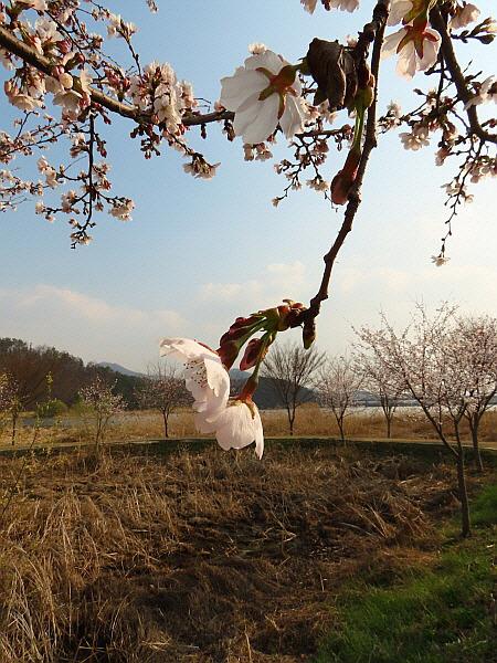 경기도 양평군 경의중앙선 양수역 물소리길