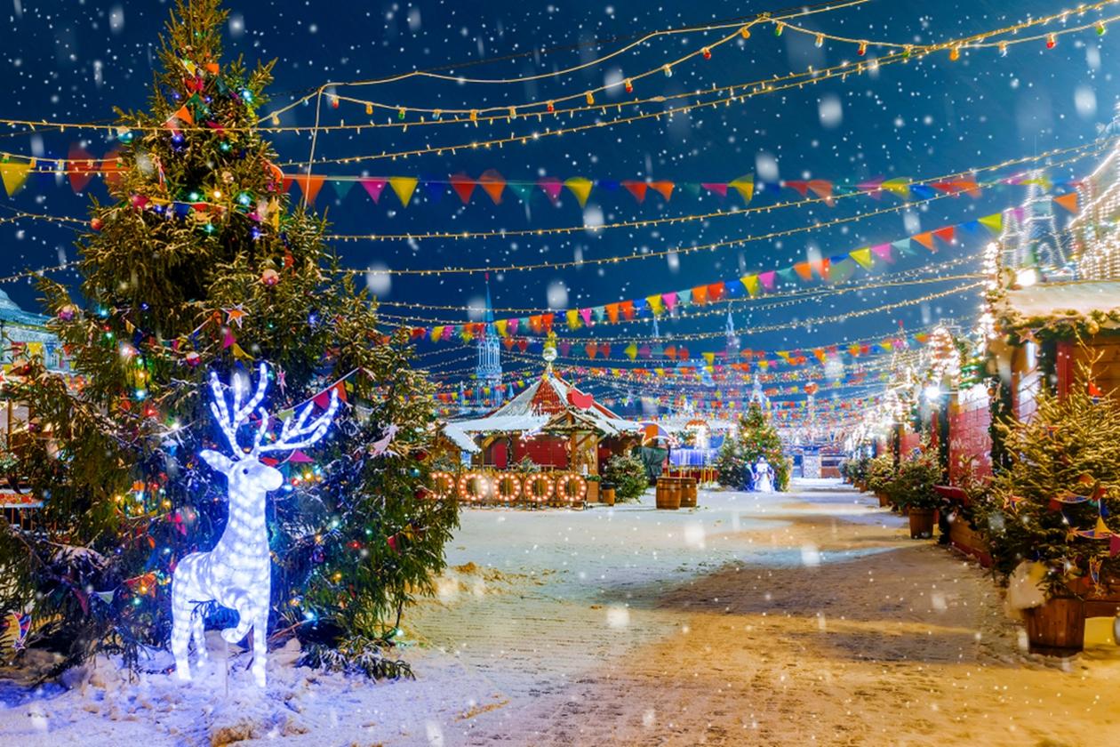 충남 겨울 축제