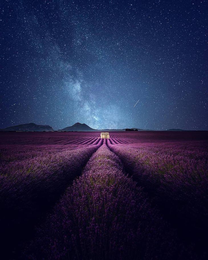 프랑스 프로방스의 숨막히는 라벤터밭과 은하수를 담은 사진