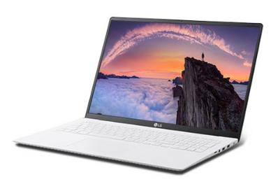 LG전자 2020 그램17 노트북 17ZD90N-VX70K (10세대 i7-1065G7 43.1cm)