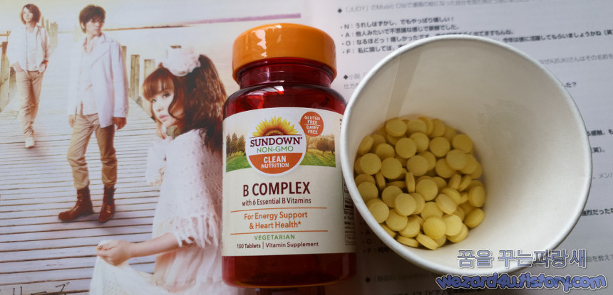 Sundown Naturals 복합 비타민 B(Sundown Naturals B Complex 100 Tablets) 내용물