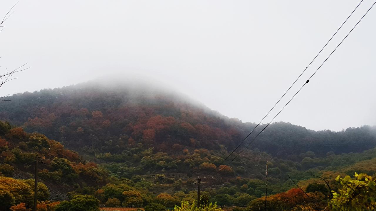 외산 갈산리 고갈마을1