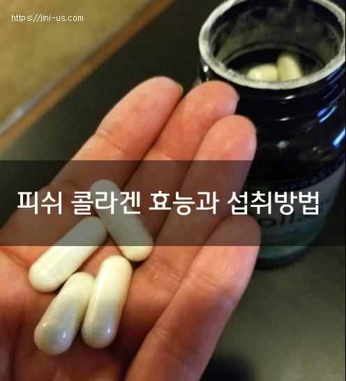 먹는 콜라겐의 효능과 섭취방법 [ 저분자 피쉬 콜라겐 펩타이드 먹는법]1