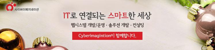사이버이메지네이션 회사 소개