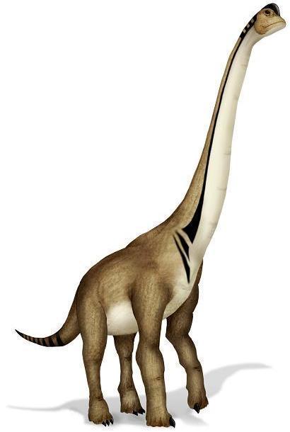 울트라사우르스 탑리엔시스(Ultrasaurus Tabriensis)
