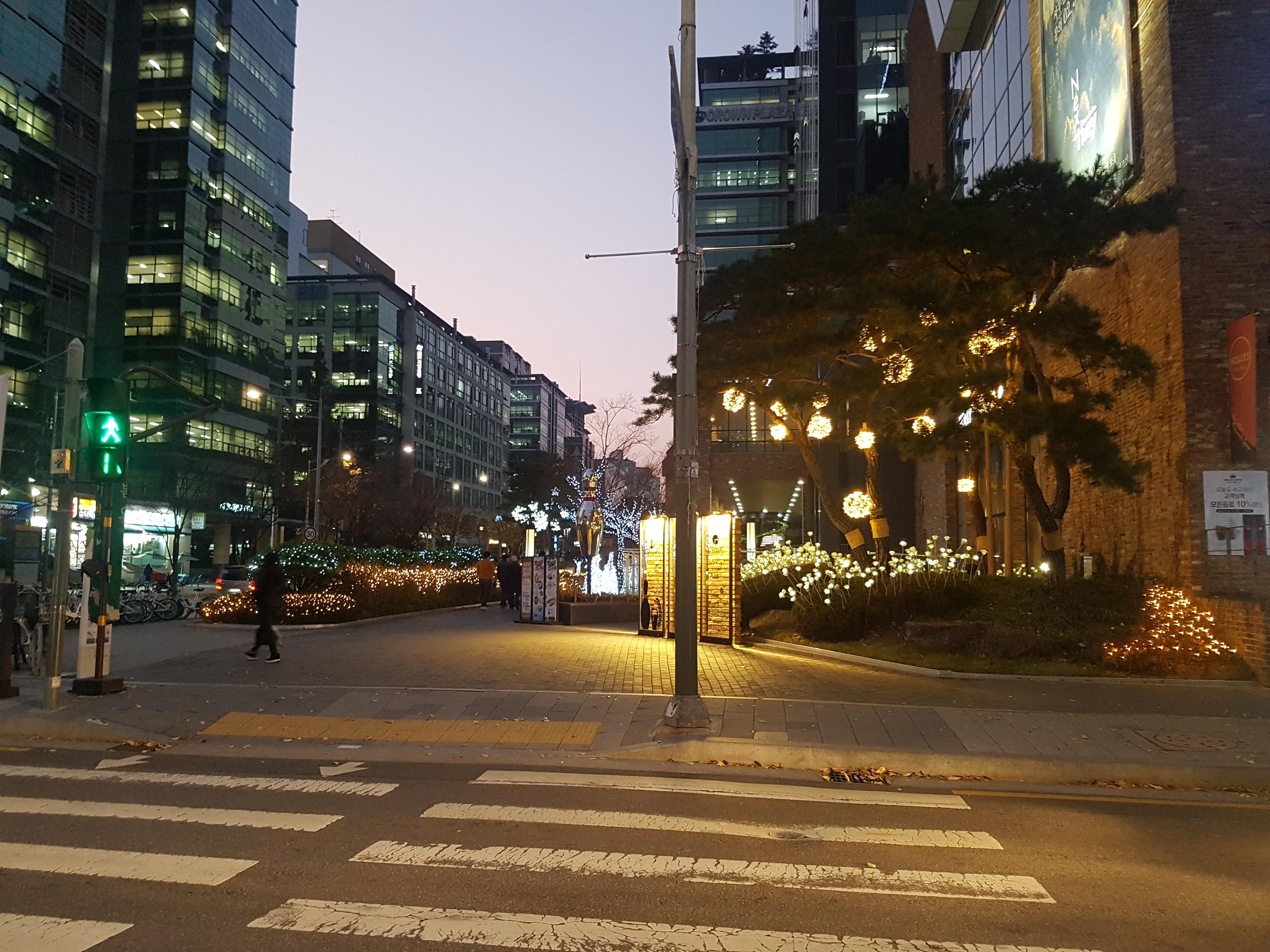 건물 앞 근사한 야경 : 크리스마스와 연말 분위기 느껴진다