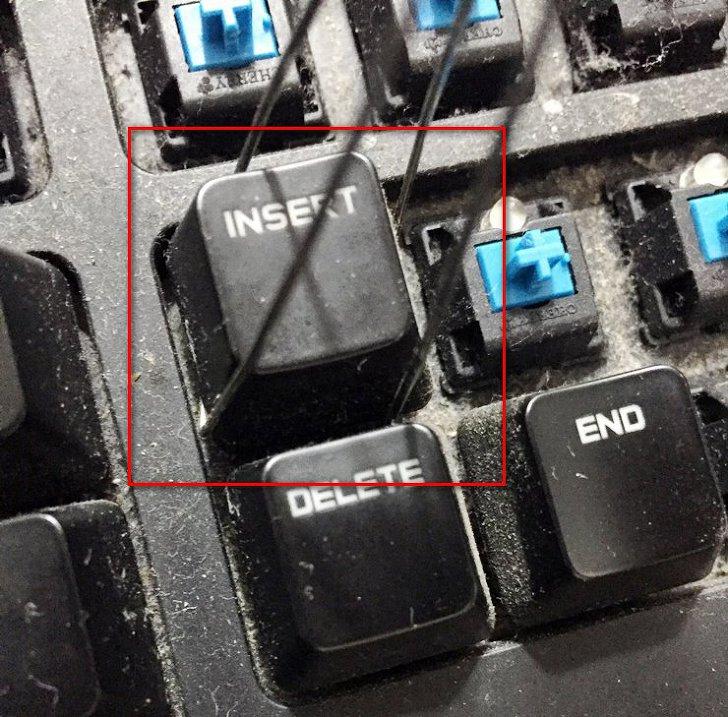 게이밍 키보드 또한 기계식 키보드
