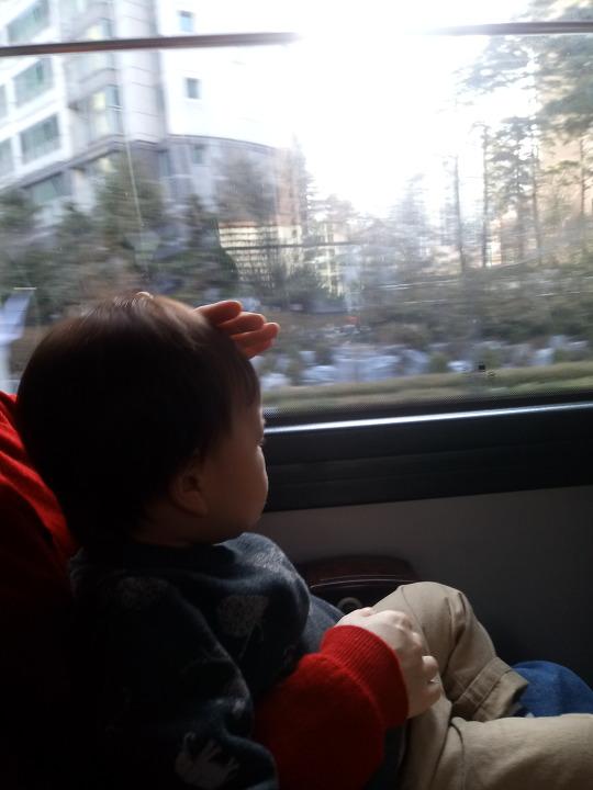 공항버스 유아동반