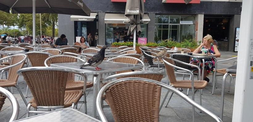 바르셀로네타 해변 카페 BuenasMigas