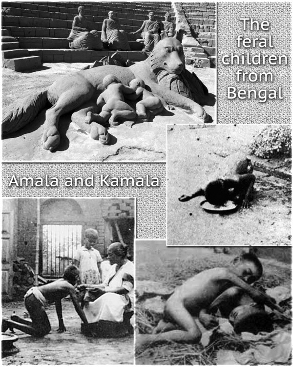 4. Kamala and Amala