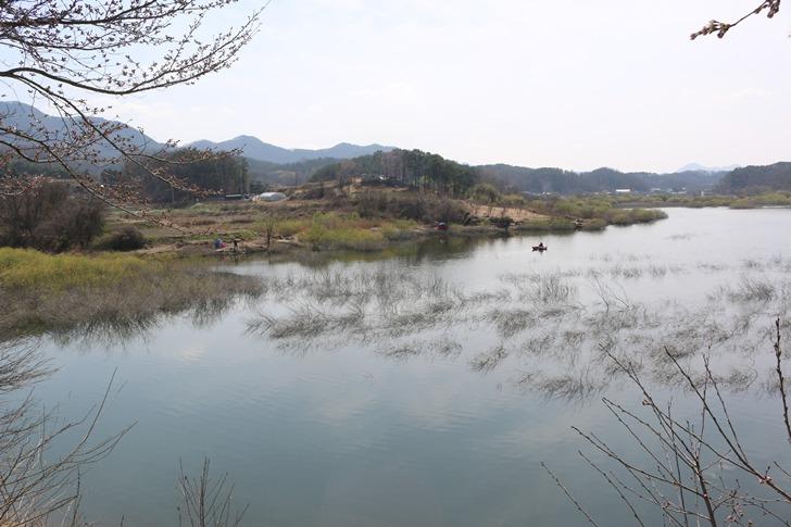 대청댐 붕어낚시 포인트 - 옥천권 수북리 안터교