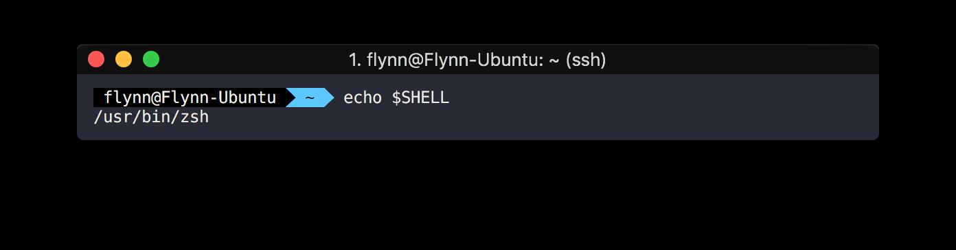 zsh가 현재 shell인지 확인