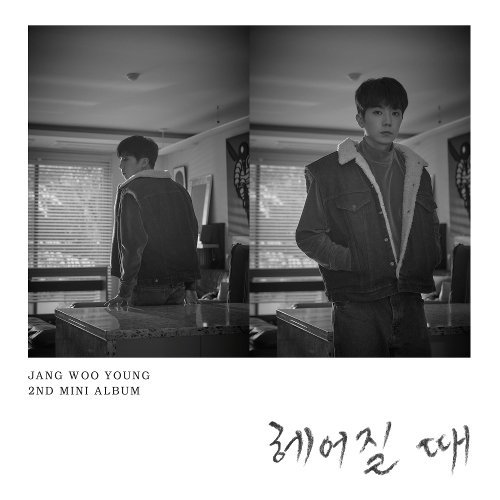 Jang Woo Young - Party Shots Lyrics [English, Romanization]