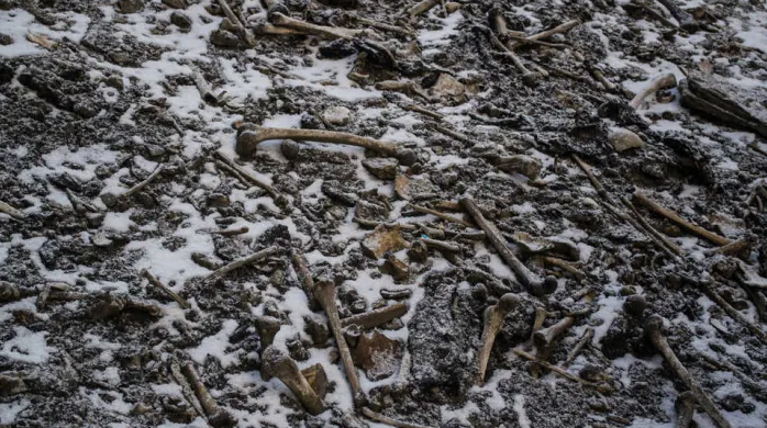 8. skeletons of Roopkund Lake