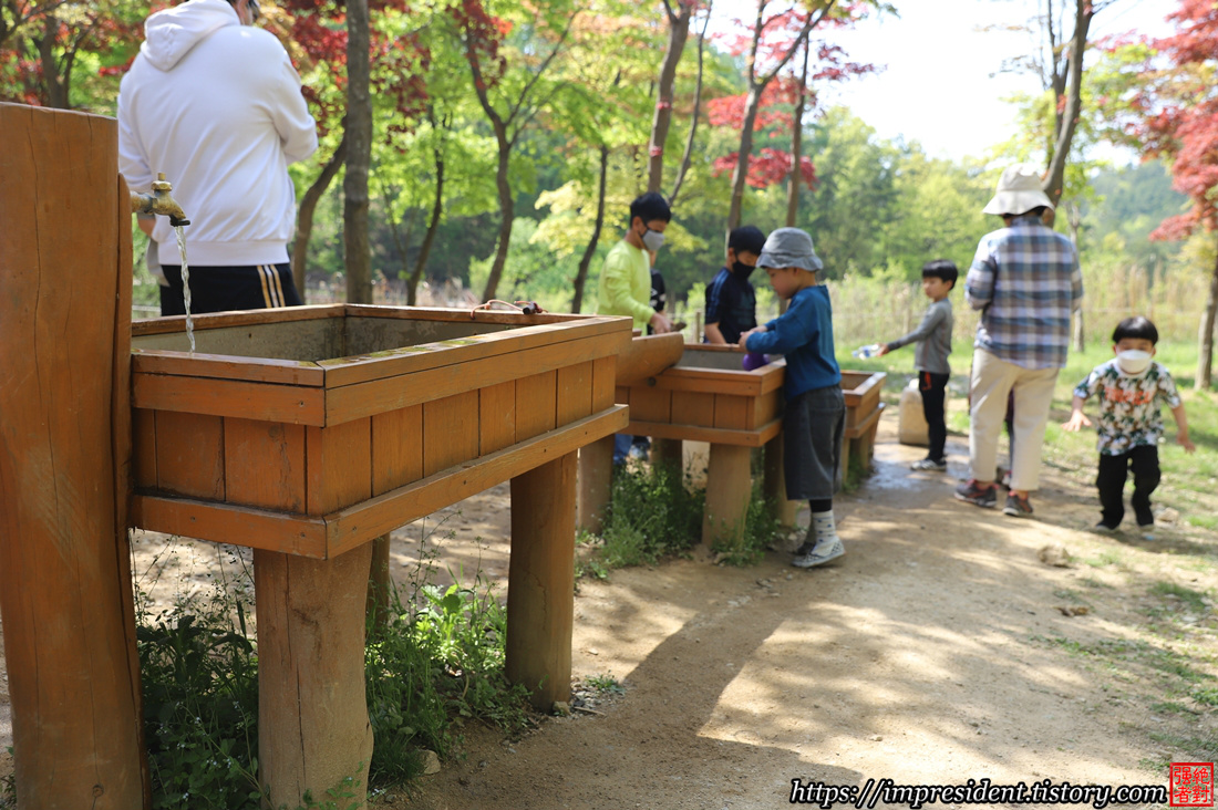 유아숲체험원9