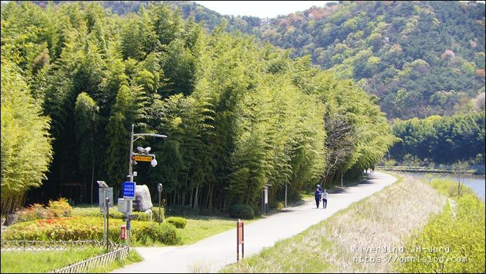 태화강 대숲길