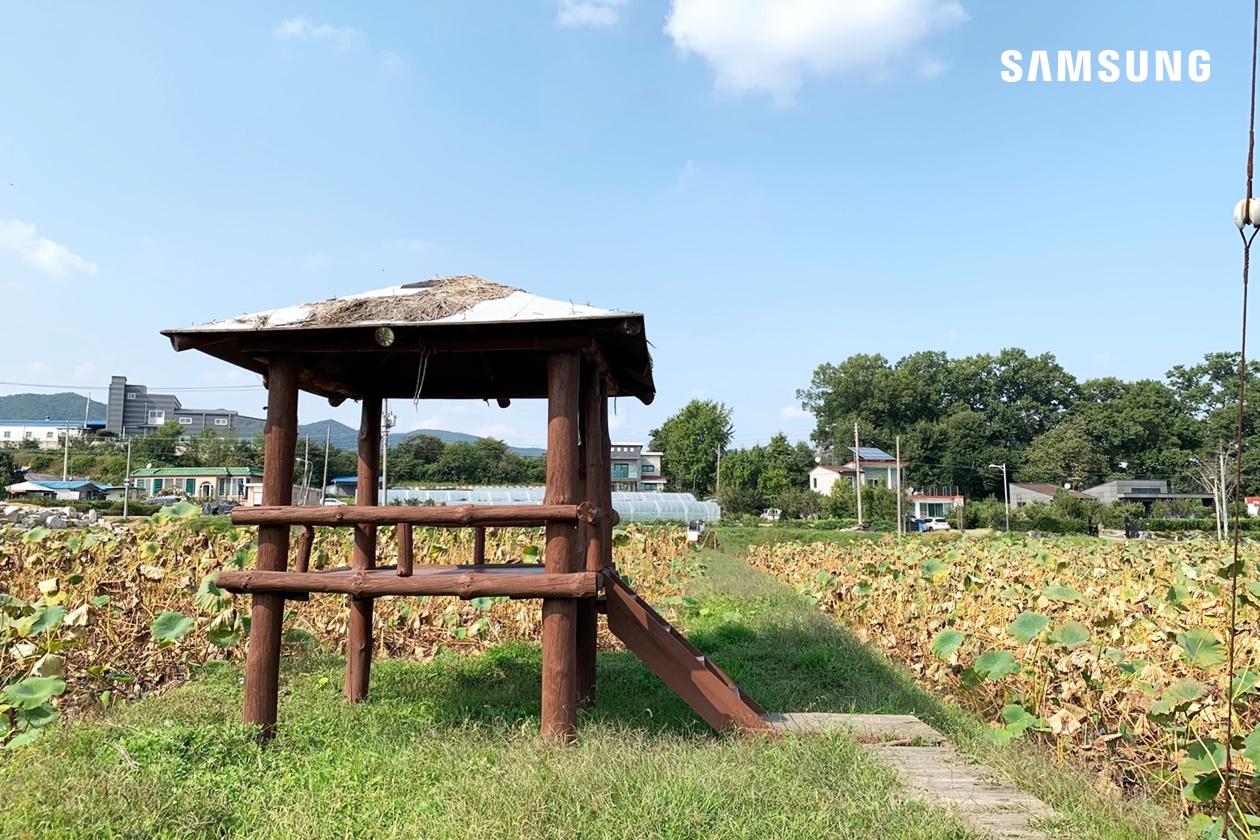 연꽃밭 정자