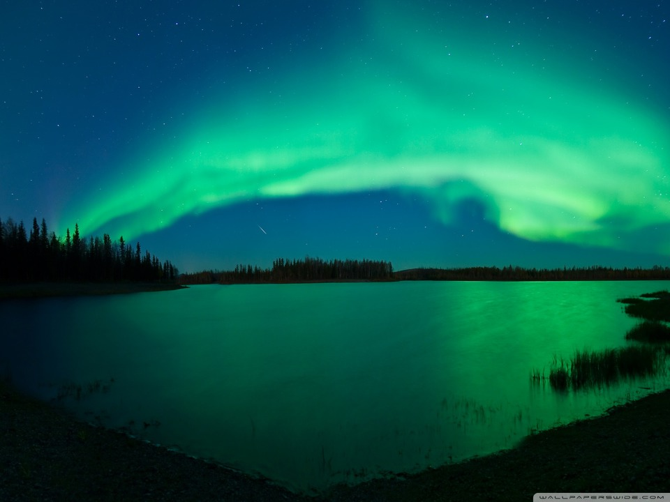 blue aurora wallpaper