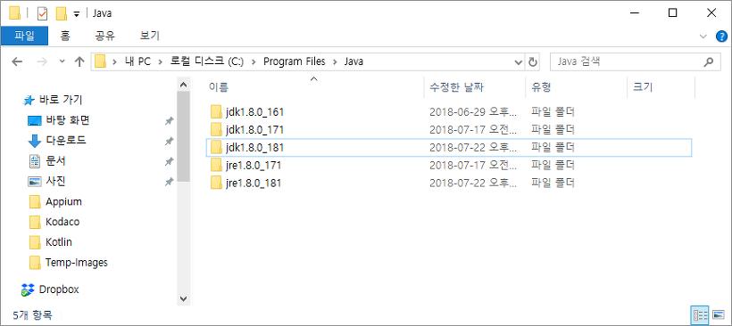 Appium 서버 구성 (on Windows)