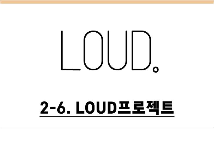 2-6. LOUD프로젝트