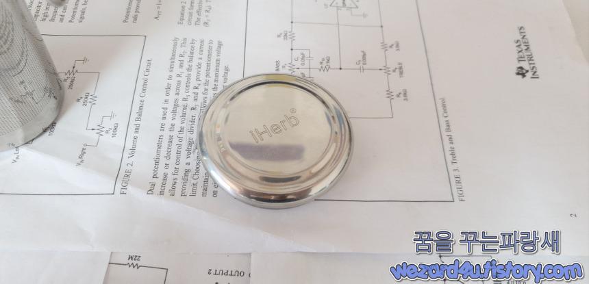티 인퓨저 iHerb Goods Stainless Steel Tea Infuser 뚜껑