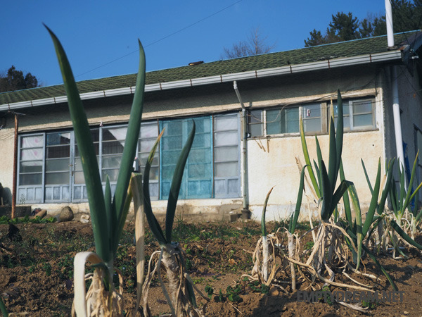 동부사택, 동해 구 삼척개발 사택과 합숙소, 동해시 일제강점기 사택 마을