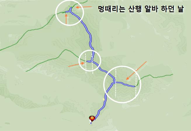 혼산 주의