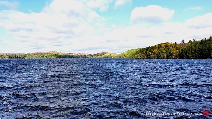 호수입니다