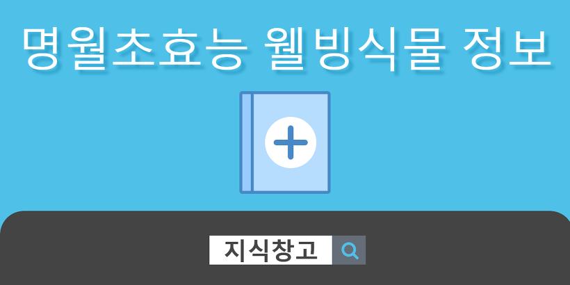 명월초효능 웰빙식물 정보