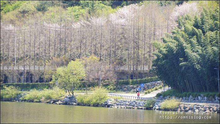 태화강변 길걷기