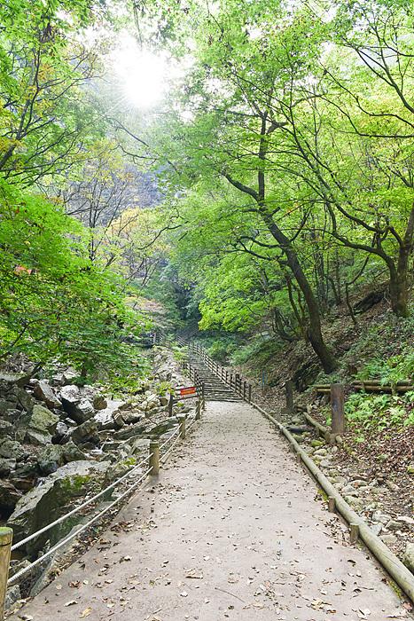 춘천 가볼만한 곳, 강원도 가볼만한 곳, 가을여행, 단풍여행, 단풍 구경, 가을에 가볼만한 곳, 강촌, 문배마을, 가을 나들이 코스
