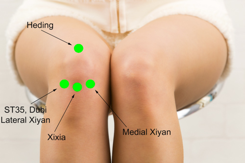 knee-acupuncture points