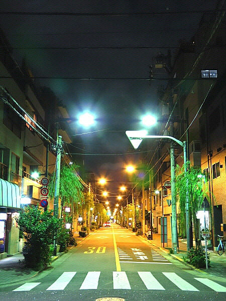 Japan nightview photo