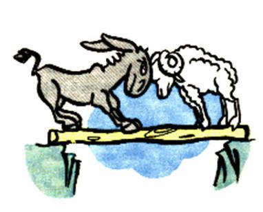 외나무다리에서 마주친 염소 두 마리가 서로 자기 길을 고집하다.
